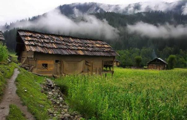 A-Taobut, Nelum valley,AJK 2
