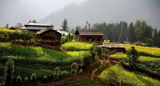 A-Taobut, Nelum valley,AJK 3