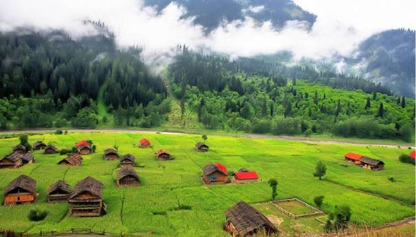 A-Taobut, Nelum valley,AJK 4
