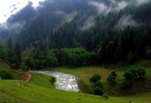 A-Taobut, Nelum valley,AJK