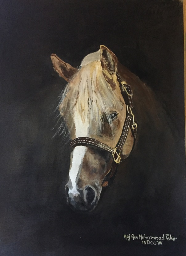 PAINT Brown Horse copy