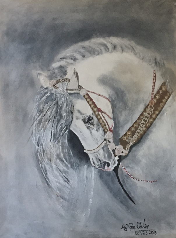 PAINT WHITE HORSE